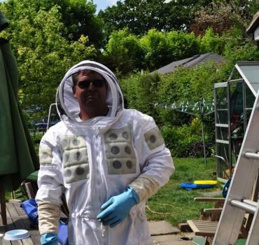 Wasps & Bees